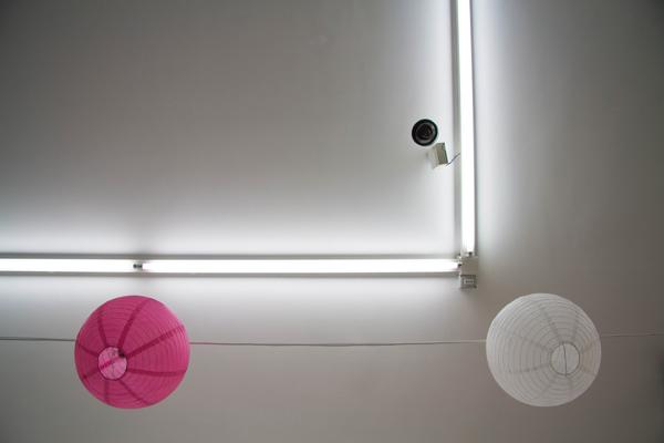 Mandla Reuter, Galleria Francesca Minini