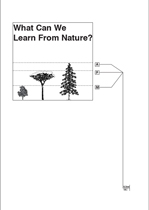 What Can We Learn from Nature? book
