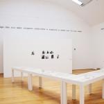 Francesca Alinovi. Exhibition view, MAMbo, Bologna