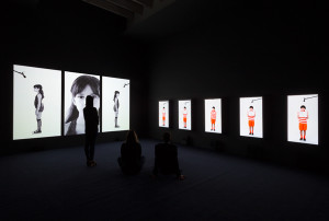 Candice Breitz, Perry Rubenstein Gallery