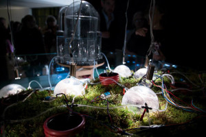 Spazio Gerra, Digital Garden