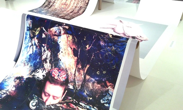 Ecal, Galleria Carla Sozzani