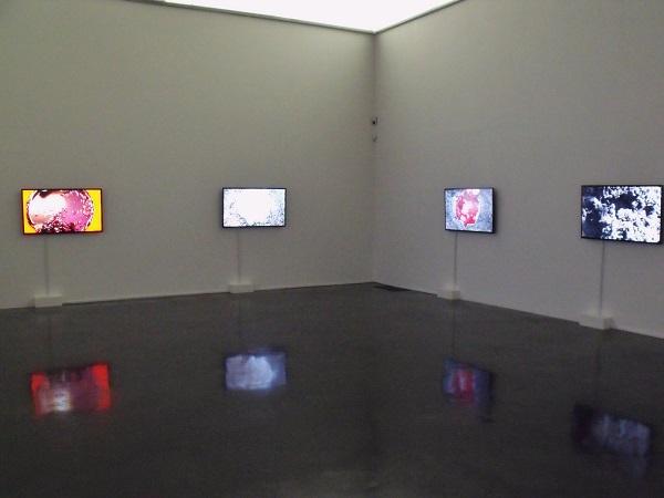 Chiharu Shiota Dialogues