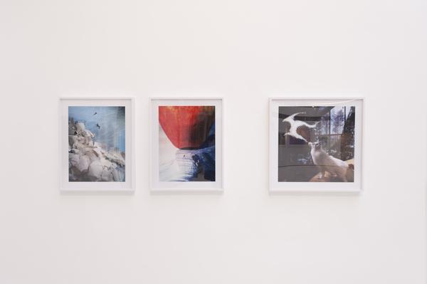 Cecilia Brunson Projects, London