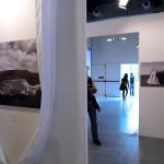 Patrizia Zelano, Silvia Romagnoli Arte Contemporanea