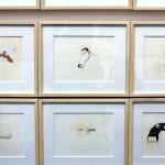 Manjunath Kamath, Gallery Espace, 2015 Armory Show