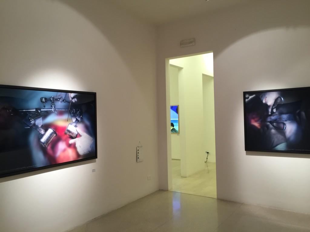 Jason Sangik Noh, Foto/Industria 2015