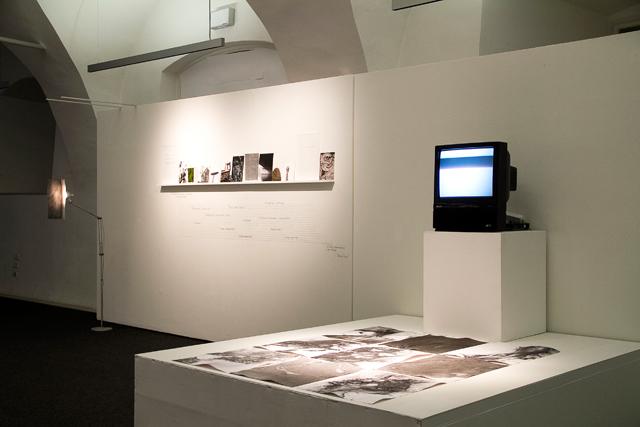Gedske Ramløv, Atelier Salzamt, Linz, book
