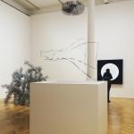 /// The Calder Prize 2005-2015:  Darren Bader, Alexander Calder, Tara Donovan, Rachel Harrison, Zilvinas Kempinas, Haroon Mirza, Tomas Saraceno. Pace Gallery - Until 5 March -