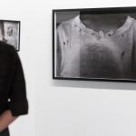 Mario Macilau, Ed Cross Fine Art, VOLTA NY, Volta, art fair