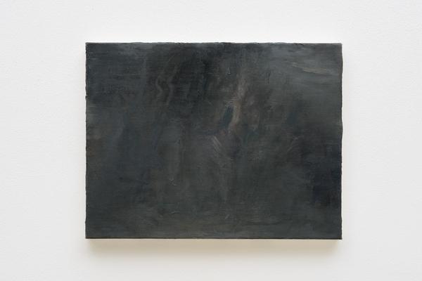David Shutter, Galleria P420.
