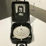 Huang Yong Ping, M+ Sigg Collection, Artistree