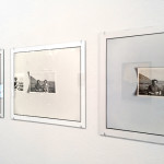 Zoe Leonard, White Columns, Armory week 2017, Armory show, New York, gallery