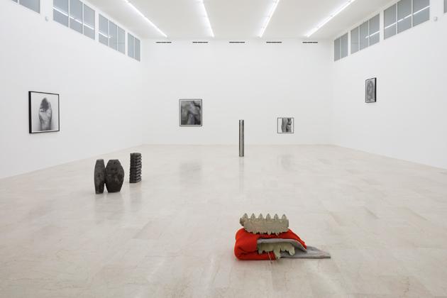 June Crespo, John Coplans, P420, P420 gallery, Bologna, Alessandro Pasotti, Artissima, Artissima 2018