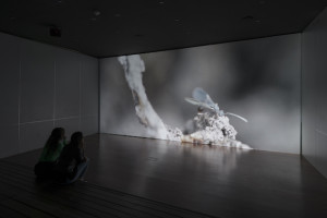 A review of Maya Watanabe's latest show Liminal written by Lorenza Pignatti   Liminal is an intense journey that analyses the threshold of the recognizable and the representable, the visible and the abstraction. The video installation presents a poetic film that focuses on Peru's internal armed conflict, perpetrated by the Peruvian state police and two guerrilla …